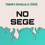 Terry Apala Ft CDQ – No Sege