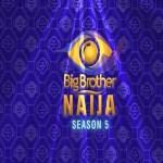 Big Brother Naija Reality Show