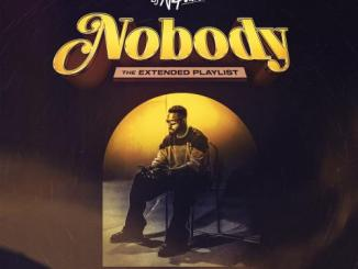 DJ Neptune – Nobody Worldwide Remixes EP (The Extended Playlist)