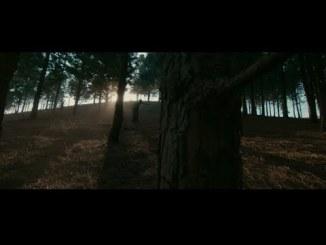 VIDEO: Fireboy DML Ft D' Smoke – Champion