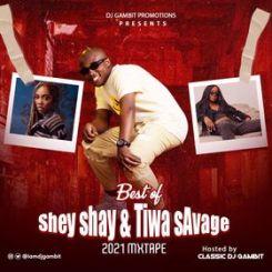 [Mixtape] Best Of Seyi Shay & Tiwa Savage 2021 Mix Fvck You (Diss Track)