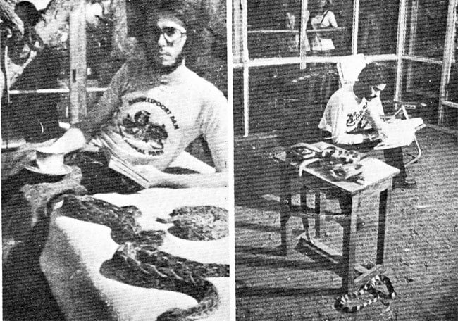 Man Spent 72 Hours With 72 Venomous Snakes To Prove A Point (Photo)
