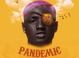 FULL EP: Ruger – Pandemic