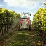 Yes, There's Weed Killer In Your Beer and Wine, But There's No Need to Worry