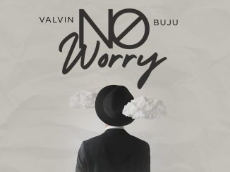 """Mp3 download: Valvin - """"No Worry"""" Ft. Buju"""