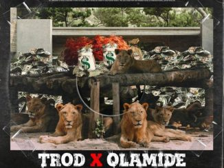 """Mp3 download: Trod - """"Shey You Fit Go?!"""" ft. Olamide"""