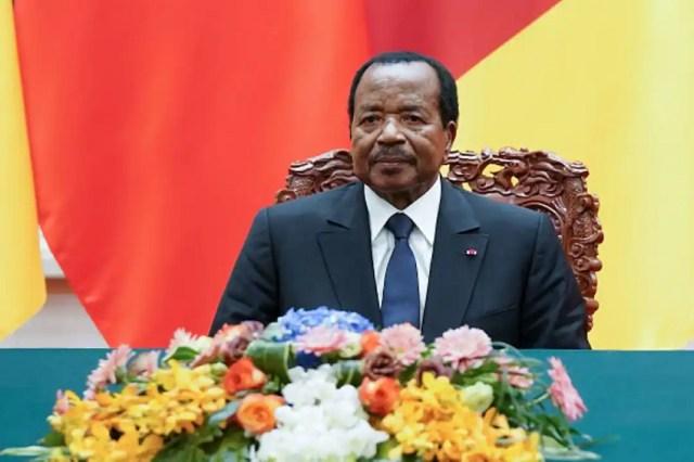 Nnamdi Kanu: Cameroon Govt Congratulates FG Over IPOB Leader's Arrest