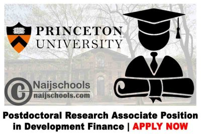 Princeton University Postdoctoral Research Associate Position in Development Finance 2020 | APPLY NOW