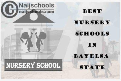 11 of the Best Nursery Schools in Bayelsa State Nigeria | No. 8's the Best