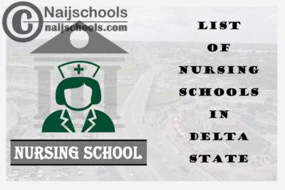 Complete List of Accredited Nursing Schools in Delta State Nigeria