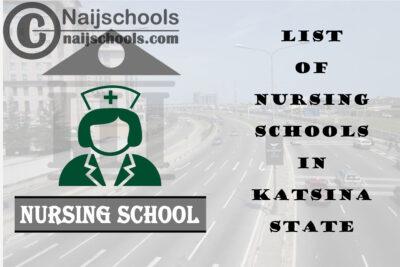 Complete List of Accredited Nursing Schools in Katsina State Nigeria
