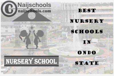 11 of the Best Nursery Schools in Ondo State Nigeria | No. 11's the Best