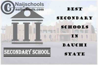 13 of the Best Secondary Schools to Attend in Bauchi State Nigeria | No. 8's the Best