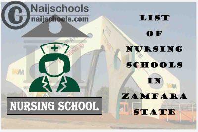 Complete List of Accredited Nursing Schools in Zamfara State Nigeria