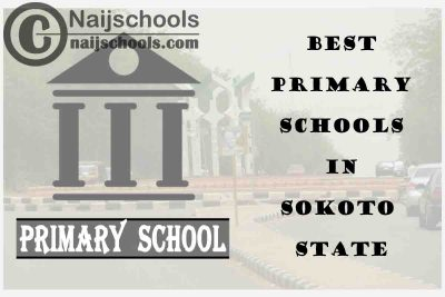 11 of the Best Primary Schools to Attend in Sokoto State Nigeria   No. 5's Top-Notch