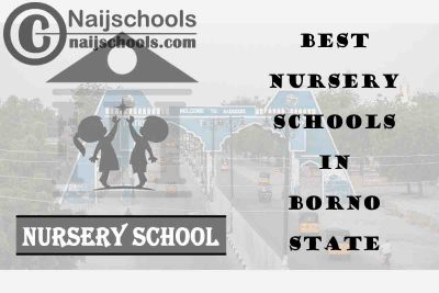 11 of the Best Nursery Schools in Borno State | No. 4's the Best