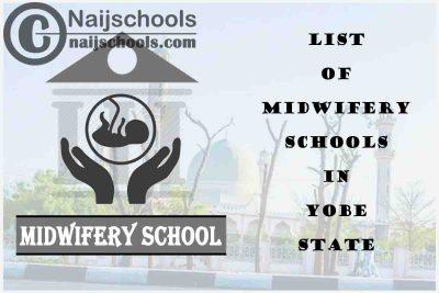 Full List of Accredited Midwifery Schools in Yobe State Nigeria
