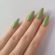 fascinating light green maroon