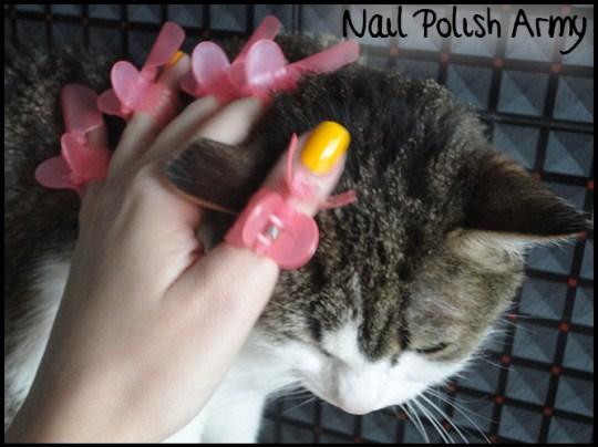 HM-Lemon-Tree-nail-polish-manicure-shields
