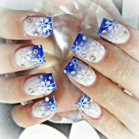 Winter Nails | nails10