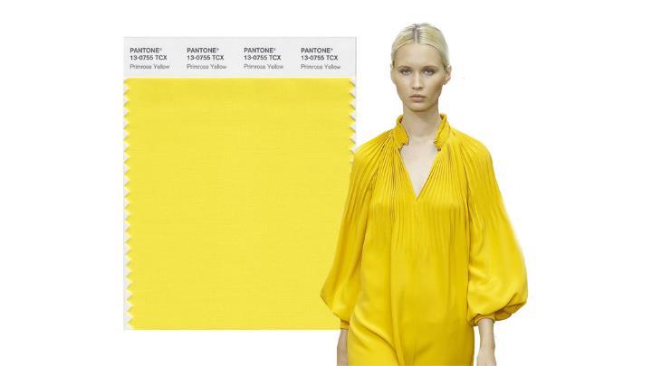 Color Primrose Yellow