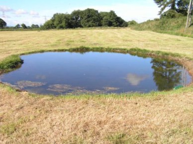 The first pond at Moorend spout created in 2013