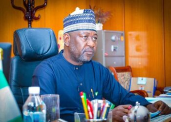 Minister of Power says FG working to complete power projects