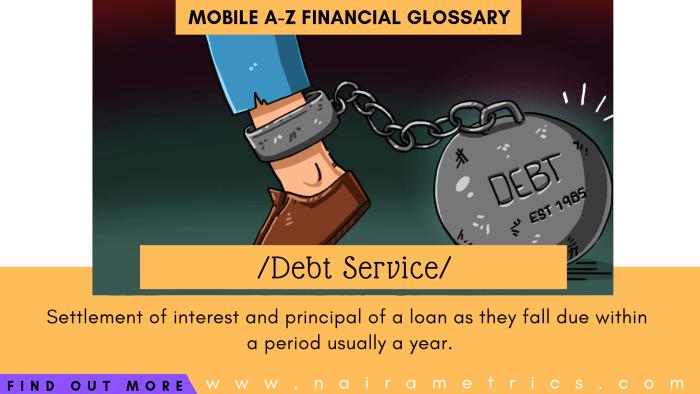 Definition of Debt Service