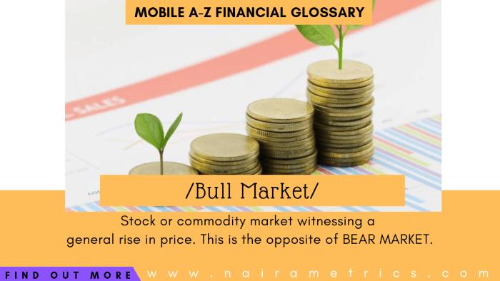Definition of Bull Market