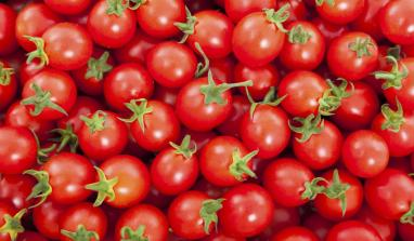 How The CBN Inadvertently Made Tomatoes Expensive in Kano