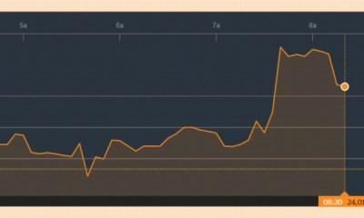 Markets roundup (Feb 25): Stocks Rally, Naira in 'Dead Cat Bounce'