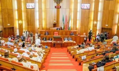 Senate pass 2019 budget