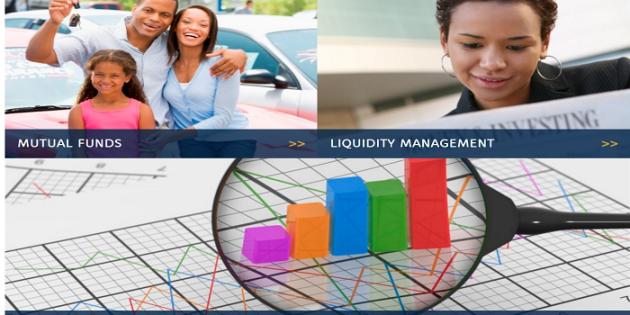 FBN Capital Asset Management Asset Losses 69% of Its Assets