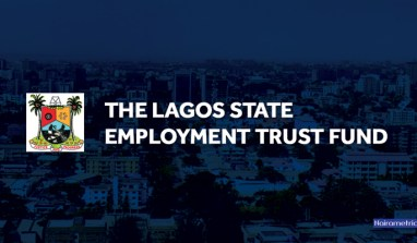 LSETF Promotes 'Made in Lagos' With Two-Day Export Workshop.