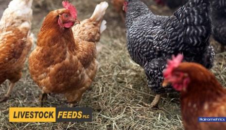 Alert: Livestock Feeds Report 19% Drop In Profit (2016 FY)