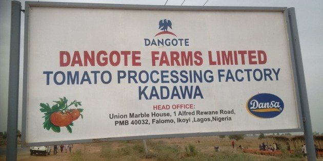 Dangote Farms is yet to banish the ghosts of last year