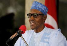 2019, general elections, President Muhammadu Buhari
