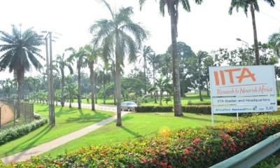 IITA, MasterCard targets