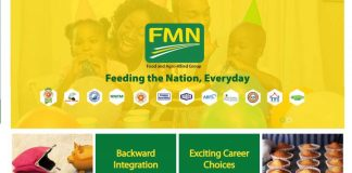 Flour Mills Nigeria Website