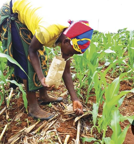 Fertilizer Producers hail FG's total ban on NPK fertilizers