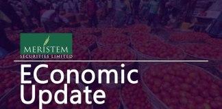Meristem Economic Update