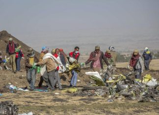 Shareholders sue Boeing, Ethiopian preliminary findings, Boeing 737-Max model crash, Ethiopian Airlines Insurance