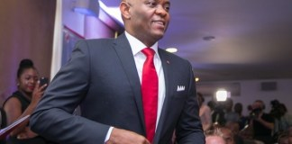 Elumelu addresses African leaders on economic growth