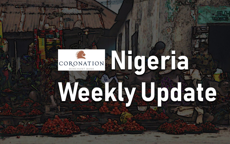 Coronation Research Nigeria Weekly Update: The public and the private sectors