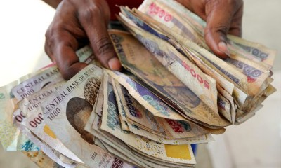 Loom Money NIgeria, MMM, Ponzi Scheme