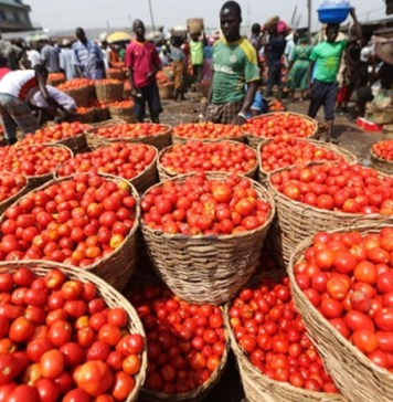 Prices of tomato, Price of rice turkey tomatoes, Prices of major food items continue to rise in major markets as border closure remains