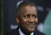 Aliko Dangote, Dangote Cement Plc