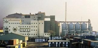 Honeywell flour mills plc, fy 2019