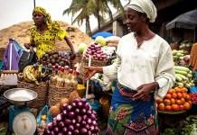 Recession portfolio, FAO Price Index: Nigeria, others to rebound rice production