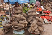 Prices of Tomatoes yam